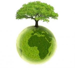 planète terre écologie